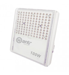 Reflector Led 100w Moonlight Luz Fria Want